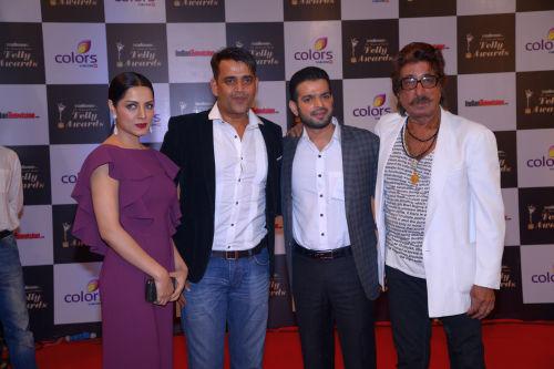 At the 13th Indian Telly Awards - Celina Jaitley, Ravia Kishan, Karan Patel, Shakti Kapoor
