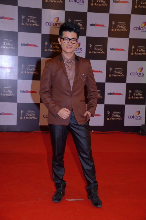 At The 13th Indian Telly Awards - Meiyang Chang