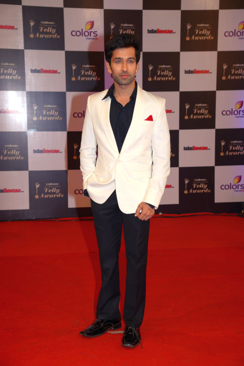 At the 13th Indian Telly Awards - Nakul Mehta