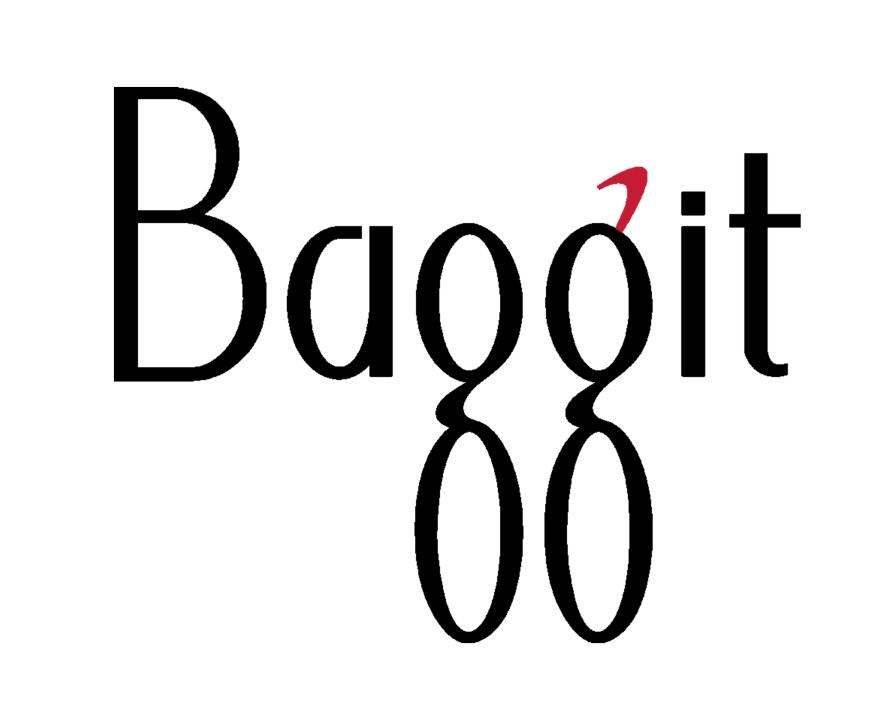 Baggit Logo copy.jpg